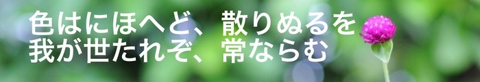 Sample title in Japanese, written with the Petit Formal Script character font.